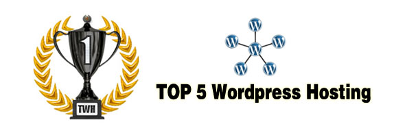 Top 5 wordpress hosting