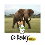 Godaddy Shoot Africa Elephant