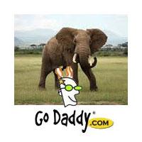 bob parsons shot an elephant