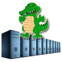 Web Hosting Monster