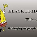 Black Friday Hosting Promo 2011