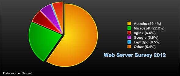 web server survey