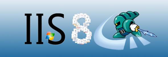 iis 8 hosting