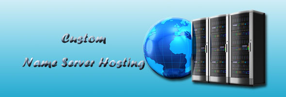 custom name server hosting