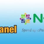 Nginx Auto Installer for cPanel