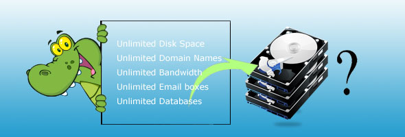 Understand unlimited hosting service