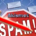 Akismet Makes Big Size Mysql