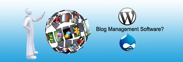 Blog Management Software