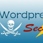Professional Tips & Plugins for WordPress Security