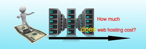 web hosting costs