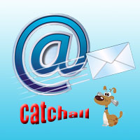 yes or no for catchall email