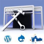 Sitebuilder or CMS