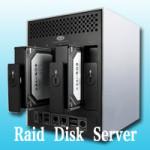 Hosting Server DISK RAID Comparison