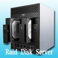 hosting server disk raid