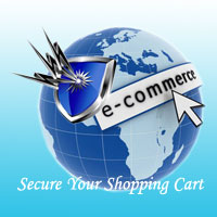 best 5 tips to secure your shopping cart site