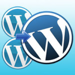 Guidance & Practice of Manual/Automatic WordPress Migration