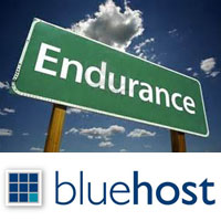bluehost endurance